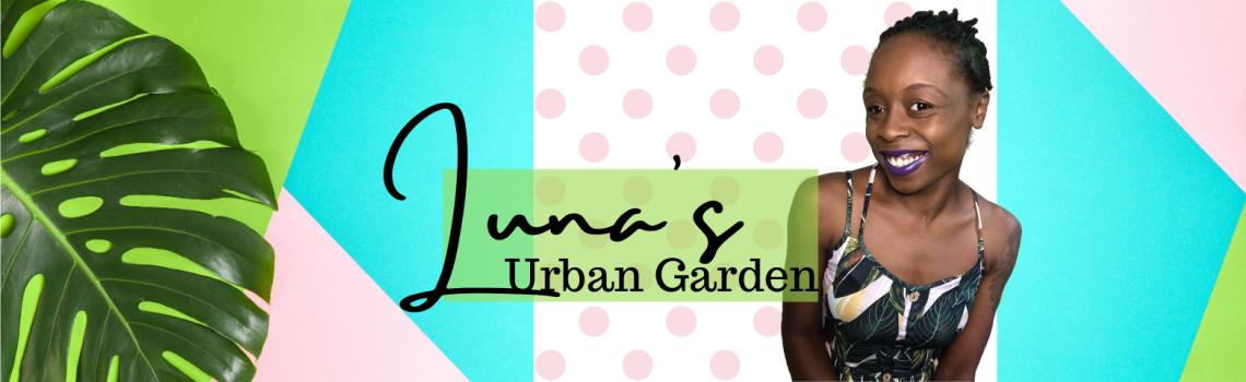 Luna's Urban Garden